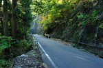 R477の山道