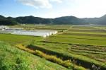 神吉の田園地帯