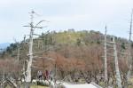 正木峰から日出ヶ岳