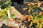 鳥戸野陵道脇の石段