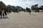 厳島神社参道
