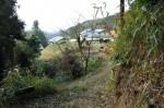 東鴨川町の山道