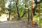 岩船寺石段入口